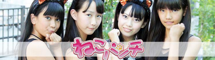ねこパンチ 秋葉原で活躍中のアイドルグループ アイドルグループ
