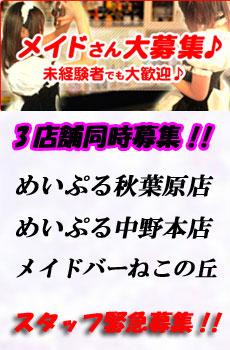 めいぷるグループスタッフ緊急募集!!