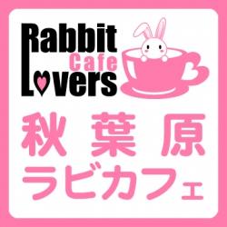 ラビットラバーズカフェ 公式ブログ